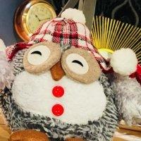 owl eye closed